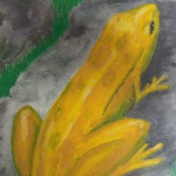 טיפול בבית שבי – על הנחש והצפרדע